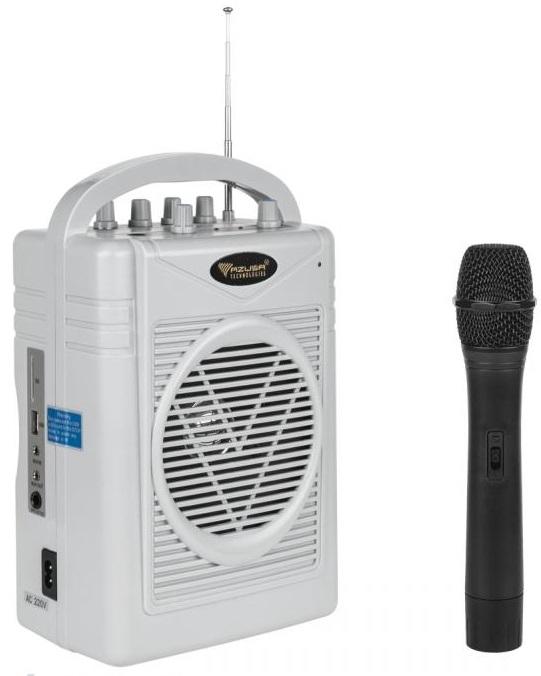 Coluna Amplificada Portátil 50W MP3/USB/SD/AUX/FM c/ Microfone sem Fios ECHO (SH-130) - AZUSA